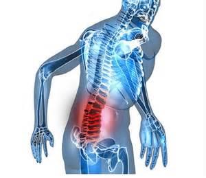 patologías de la espalda
